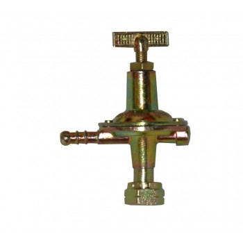 Reducer adjustable